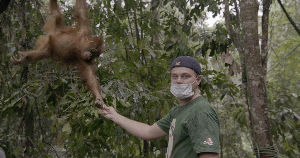 El -finalmente- ganador del Oscar, Leonardo DiCaprio, produce y aparece en varias producciones de Disney+.